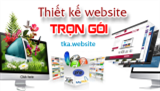 Cty thiết kế web